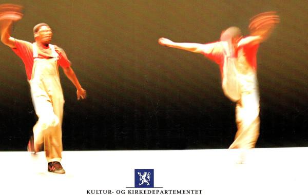 MANGFOLDSÅRET 2008: Rapport